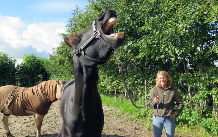 Trust Technique sessie met Jelle en Angela